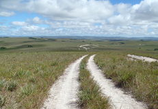 Route to Savannah. A day of trekking to arrive at the Toron waterfall in the Gran Sabana, Venezuela Stock Image