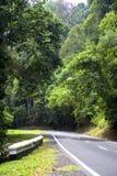 Route tropicale de forêt humide Photos libres de droits