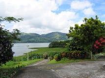 Route tropicale un jour nuageux Photos libres de droits