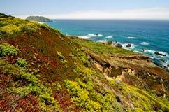 Route 1 van de Staat van Californië Uitzicht Stock Foto