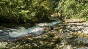 Route van de watervallen met 14 watervallen in corupa één van de laatste gebieden van het Atlantische bos in Brazilië royalty-vrije stock afbeeldingen