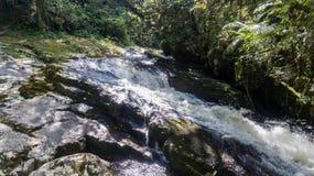Route van de watervallen met 14 watervallen in corupa één van de laatste gebieden van het Atlantische bos in Brazilië stock afbeelding