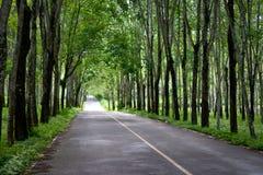 Route verte de tunnel Photo libre de droits