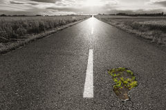Route vide avec un trou vers le coucher de soleil Photographie stock