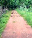 Route vide dans la jungle de la Thaïlande Photo libre de droits