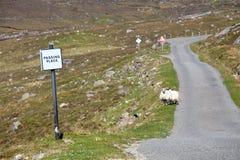 Route vide de piste simple avec passer la place Photographie stock