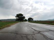 Route vide humide dans le jour sombre Photographie stock