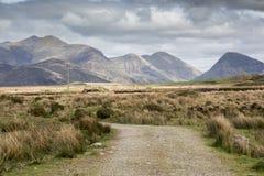 Route vide Irlande 0018 Image libre de droits