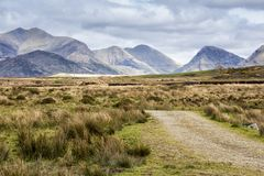 Route vide Irlande 0026 Images libres de droits