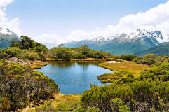 routeburn nowy ślad Zealand Zdjęcia Stock