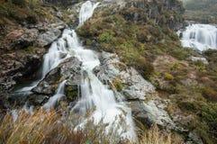 Routeburn siklawa, Nowa Zelandia Zdjęcia Royalty Free
