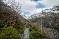 Routeburn Track Stock Photography