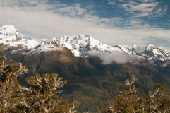 Routeburn Track Royalty Free Stock Image
