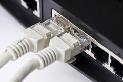Router sem fio e cabo de Lan Fotografia de Stock