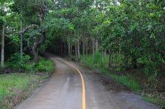 routes Photographie stock libre de droits