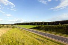 Routes avec l'herbe verte Photo stock