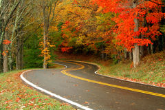 Routes d'automne Photo stock