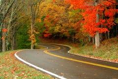 Routes d'automne Photo stock