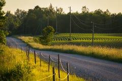 Routes de campagne Photo libre de droits