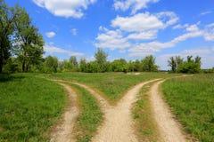 Routes de fourchette en steppe photographie stock libre de droits