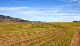 Routes de la Mongolie Image stock