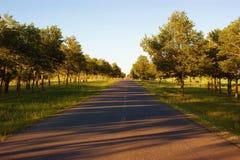 Routes de matin d'été images stock
