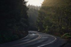 Routes et lumière du soleil de l'Orégon image libre de droits