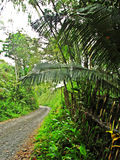 Routes rurales Photos stock