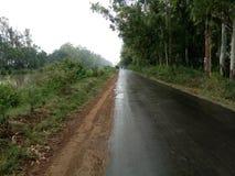 Routes stupéfiantes de l'INDE images libres de droits