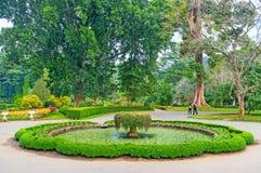 Routes sur le jardin botanique Images libres de droits