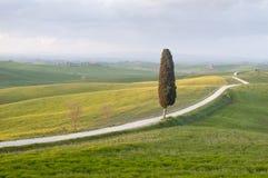 Routes toscanes image libre de droits