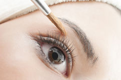 Routine eyes make up Royalty Free Stock Photo