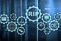 Routing Information Protocol dello STRAPPO Cocept delle reti di tecnologia royalty illustrazione gratis