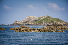 Rouzig Island. The rouzig island where northern gannet colony of more than ten thousand birds nest royalty free stock photography