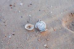Rova på havsstranden arkivfoto