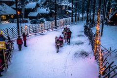 Rovaniemi - December 16, 2017: Tourists riding reindeers in Sant Royalty Free Stock Images
