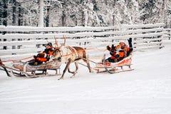 Rovaniemi, Finlande - 30 décembre 2010 : Couplez saluer des spectateurs pendant la course sur le traîneau de renne en Finlande en photos libres de droits