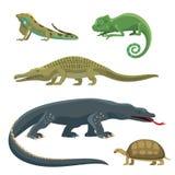 Rovdjurs- reptildjur för reptil och för amfibisk färgrik reptiloid för faunavektorillustration vektor illustrationer