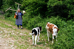 BY ROVENSKO, RUMÄNSK BANAT, MAJ 2009 - oidentifierad kvinna som går tillbaka från fältet Arkivbild