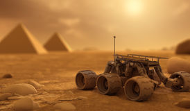 rover Foto de archivo libre de regalías