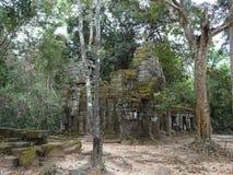 Rovina antica al tempio di Prohm di tum in Siem Reap, Cambogia fotografia stock libera da diritti