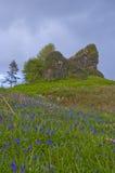 Rovina del castello di Aros Fotografia Stock Libera da Diritti