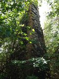 Rovina della piantagione Immagine Stock