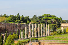 Rovine al forum a Roma Immagine Stock Libera da Diritti