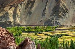 Rovine al monastero di Basgo, ladakh, India Fotografia Stock