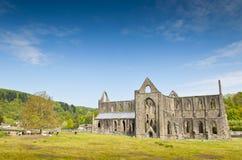 Rovine antiche, abbazia di Tintern, Galles, Regno Unito Fotografie Stock