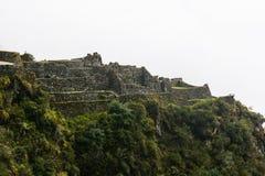 Rovine antiche di inca su una scogliera verde selvaggia Immagine Stock