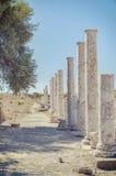 Rovine antiche laterali della via di Columnated Immagine Stock Libera da Diritti