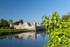 Rovine del castello di Adare Immagine Stock Libera da Diritti