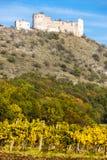 Rovine del castello di Devicky Immagine Stock Libera da Diritti
